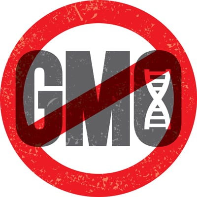 Shakeology does not contain any GMO ingredients!