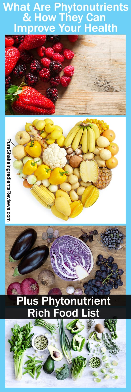 How beneficial are phytonutrients? Find out how they can improve your health. Plus phytonutrient rich food list. http://www.pureshakeingredientsreviews.com/what-are-phytonutrients