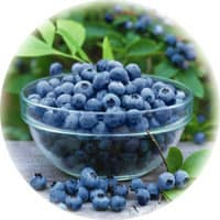 Shakeology ingredients: Blueberries