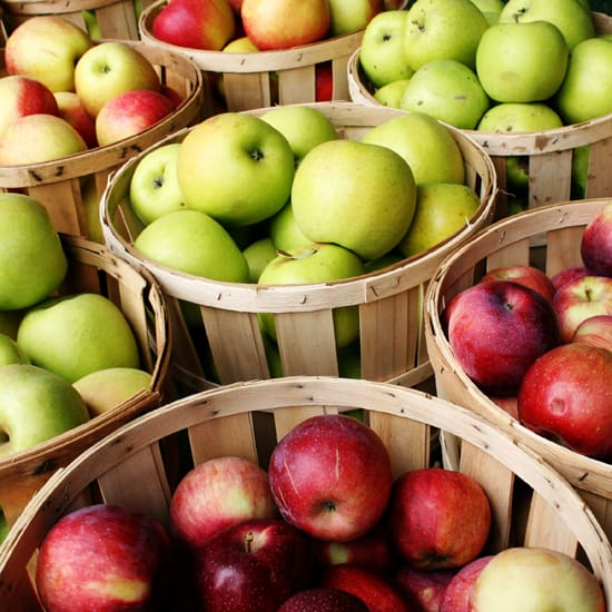 best foods for weight loss - apples